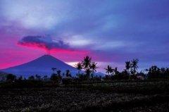 河南776名滞留巴厘岛游客陆续返程!记住,你有个强大的祖国